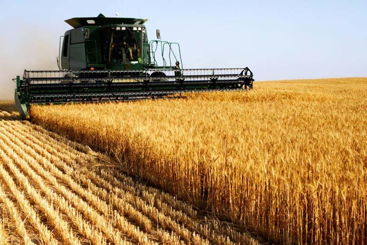 Proroga Bando ISI Agricoltura 2016