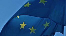 Realizzazione Pilastro Europeo dei diritti sociali